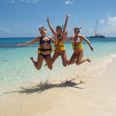 Day Great Barrier Reef Trips | cairns