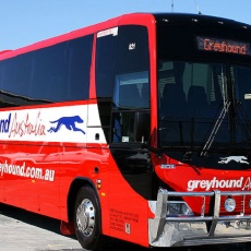 Hop on hop off Bus Pass - Discounted Greyhound